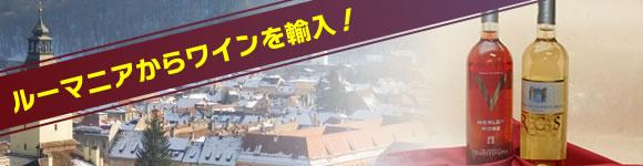 sake_voice_006_2